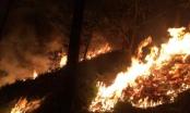 Quảng Ninh: Cháy rừng kéo dài, hàng trăm người được huy động khống chế bà hoả