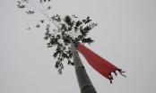 3 người bị điện giật thương vong khi đi dựng cây nêu thuê