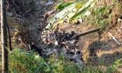 Tuyên Quang: Truy quét, xử lý hoạt động khai thác khoáng sản sau phản ánh của Pháp luật Plus