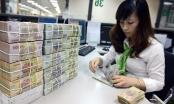 Tin kinh tế 7AM: Điểm danh loạt đại gia có núi tiền gửi ngân hàng; Nông nghiệp vượt qua nguy cơ kép