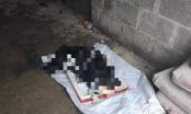 Lạng Sơn: Bí ẩn bộ xương người được phát hiện dưới nền nhà