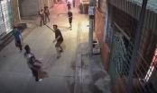 [Clip]: Người dân truy bắt đối tượng nghi ngáo đá ném bom vào tiệm vàng tại Hải Phòng