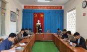 TP Đà Lạt: Đình chỉ công tác Chủ tịch phường 1 và phường 6 do sử dụng chất kích thích