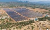 Hàng loạt dự án điện mặt trời 'ngó lơ' kết luận của Thanh tra Chính phủ