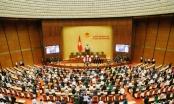 Hôm nay (6/4), Quốc hội bầu Phó Chủ tịch nước và Tổng Kiểm toán Nhà nước