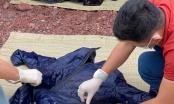 Phát hiện bộ xương nghi thuyền viên gặp nạn còn nguyên vẹn dạt vào bãi biển ở Nghệ An