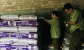Phát hiện gần 10 tấn phân bón nhập khẩu trên nhãn không ghi xuất xứ