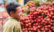 Tin kinh tế 6AM: Việt Nam xuất khẩu 100 tấn vải thiều sang Australia