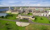 Biznews: PVN nuôi dưỡng nguồn thu từ Cụm Khí-Điện-Đạm Cà Mau; Theo dõi công tơ hàng ngày trên ứng dụng EVNHANOI