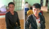 Lâm Đồng: Bắt giữ 2 đối tượng trộm cắp bò của người dân