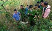Đắk Nông: Truy tố đối tượng bắn chết người vì tưởng là khỉ