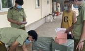 Nghệ An: Thu giữ gần 1.500 đơn vị mỹ phẩm các loại không hóa đơn chứng từ