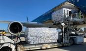 Báo cáo Thủ tướng việc lập hãng hàng không vận tải hàng hoá mới