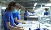 137 doanh nghiệp ở Tây Ninh đăng ký thực hiện sản xuất 3 tại chỗ