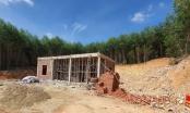 Nghệ An: Đề xuất thu hồi 295 ha đất trồng lúa và 40 ha đất rừng phòng hộ