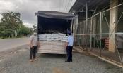Hàng tấn phân bón vi phạm nhãn bị phát hiện khi đi qua chốt kiểm soát dịch