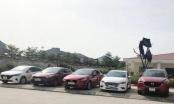 Nghệ An: Bắt giữ nhóm Giám đốc dởm thuê xe ô tô rồi mang bán