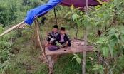 """Cảm phục học trò người H'Mông xứ Nghệ dựng chòi trên núi """"tìm sóng"""" học trực tuyến"""