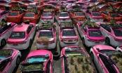 Ế khách mùa dịch, hãng taxi Thái Lan trồng rau trên ô tô