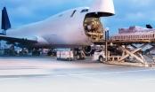Đề nghị vua hàng hiệu làm việc với Bộ GTVT về việc lập hãng bay