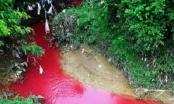 """Hoang mang nhìn dòng suối """"máu"""" bất thường ở Điện Biên"""