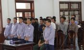 Quảng Nam: Xét xử vụ phá rừng Pơ mu khu vực cửa khẩu Nam Giang