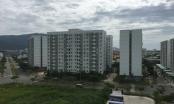 Đà Nẵng: Sở Xây dựng thông tin về việc mở bán căn hộ chung cư, nhà ở xã hội