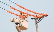 Đà Nẵng: Thành lập thêm đội sửa chữa nóng lưới điện