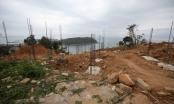 Nhiều sai phạm trong thẩm định, giao đất cho các dự án tại bán đảo Sơn Trà