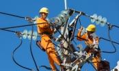 Đà Nẵng: Đảm bảo an toàn lưới điện phục vụ Tết Canh Tý 2020