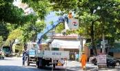 Điện lực Đà Nẵng căng mình đảm bảo lưới điện trong mùa dịch Covid-19