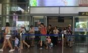 Đà Nẵng rà soát số lượng du khách trước chuyến bay trở về các địa phương