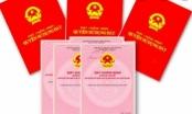 Tạm đình chỉ Giám đốc Văn phòng Đăng ký đất đai quận Sơn Trà