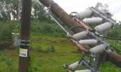 EVNCPC khẩn trương xử lý sự cố lưới điện do bão số 5 gây ra