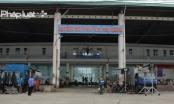 Đà Nẵng triển khai Đề án thí điểm khai thác chế biến và xuất khẩu cá nóc