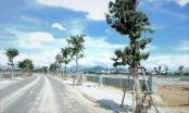 Đà Nẵng: Ban hành giá đất ở tái định cư các khu dân cư trên địa bàn quận Ngũ Hành Sơn