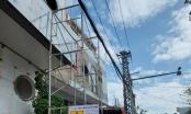 Điện lực Đà Nẵng phát hiện nhiều vụ vi phạm hành lang tuyến