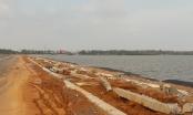 Triển khai thực hiện đấu thầu qua mạng trên địa bàn tỉnh Quảng Nam