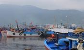 Hơn 15.000 tỷ đồng xây dựng Đà Nẵng - TP môi trường giai đoạn 2021 - 2030
