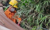 PC Đà Nẵng hỗ trợ khách hàng công tác an toàn điện mùa nắng nóng