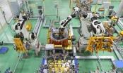 Quảng Nam: Tốc độ tăng trưởng kinh tế tăng 11,7% sau 6 tháng đầu năm