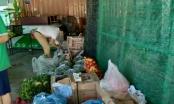 Đà Nẵng: Lập 4 đoàn kiểm tra các cơ sở cung cấp lương thực, thực phẩm, hàng thiết yếu