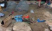 Xóa sổ trường gà quy mô lớn giáp ranh Đà Nẵng – Quảng Nam