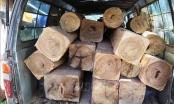 Bị phát hiện chở hàng chục lóng gỗ lậu, chủ hàng và lái xe 'bỏ của chạy lấy người'