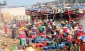 Hơn 1.200 ngư dân Quảng Ngãi bám biển Hoàng Sa xuyên tết