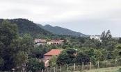 Thanh tra Hà Nội công bố kết luận sai phạm tại rừng Sóc Sơn