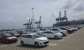 Xế hộp giá rẻ ồ ạt đổ bộ; hàng nghìn xe Nga được biệt đãi vào Việt Nam