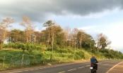 'Tham nhũng' 40ha đất rừng, nguyên thường vụ Tỉnh ủy Đắk Nông nhận… huân chương lao động