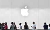 Nhà đầu tư lãi bao nhiêu nếu mua 1.000 USD cổ phiếu Apple cách đây 10 năm?