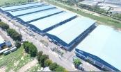 'Đất nhà' còn trống nhưng doanh nghiệp TP HCM thuê đất… tỉnh khác